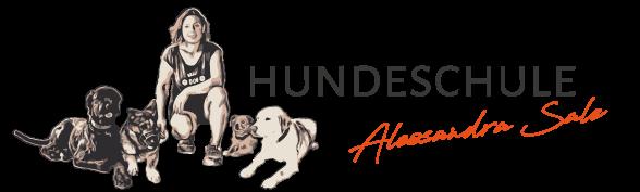hundeschule-grossostheim.de